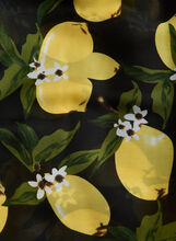 Lemon Print Scarf, Gold, hi-res